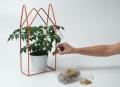 Serres urbaines - Plante en ville