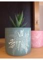 tasse-dentelle-plante